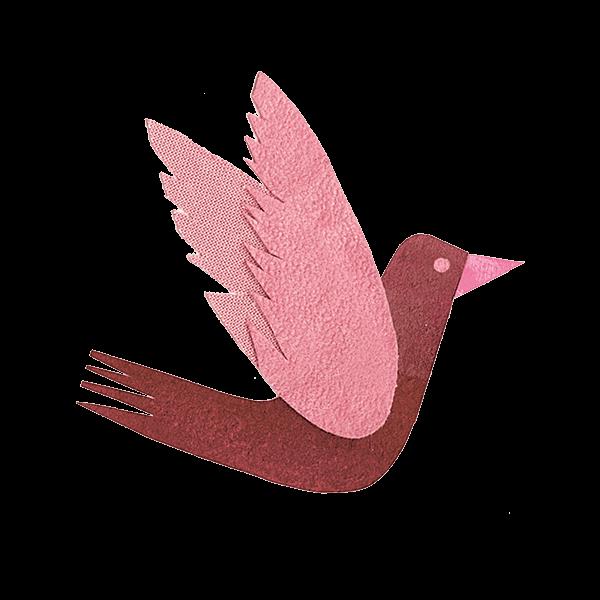 uccellino_rosa
